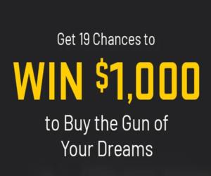 ✅ CONFIRMED: Your 19 free gun entries